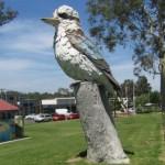 The Big Kookaburra