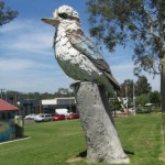 The Big Kookaburra